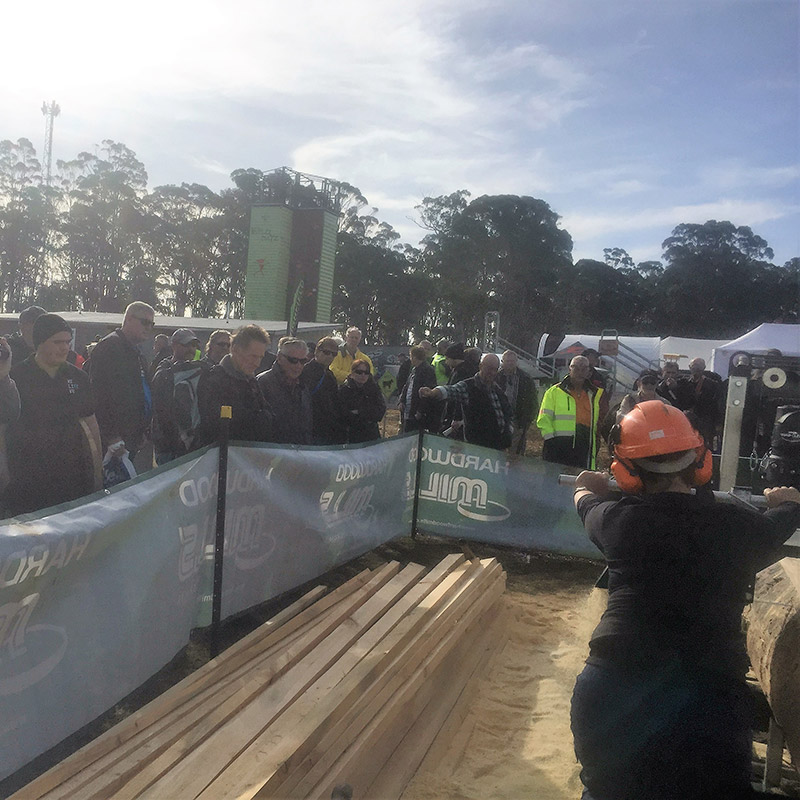 Timber cutting gallery live demo