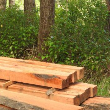 timber pieces cut