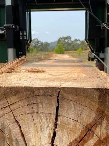 Built to cut ANY Australian hardwood